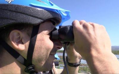 Lagune Cabras Bird Watching (2)